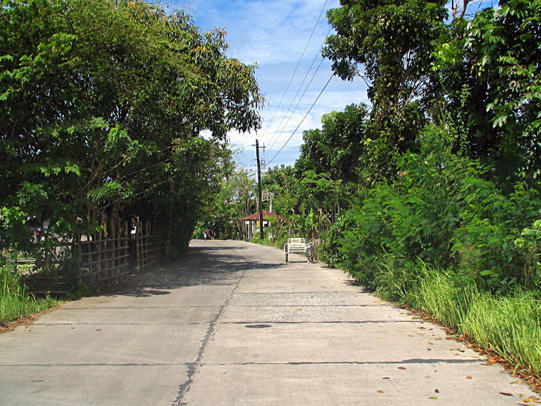 Barangay road and bicycle with sidecar