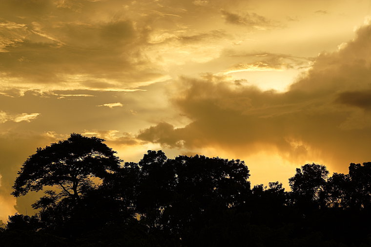 Amazing Sky II