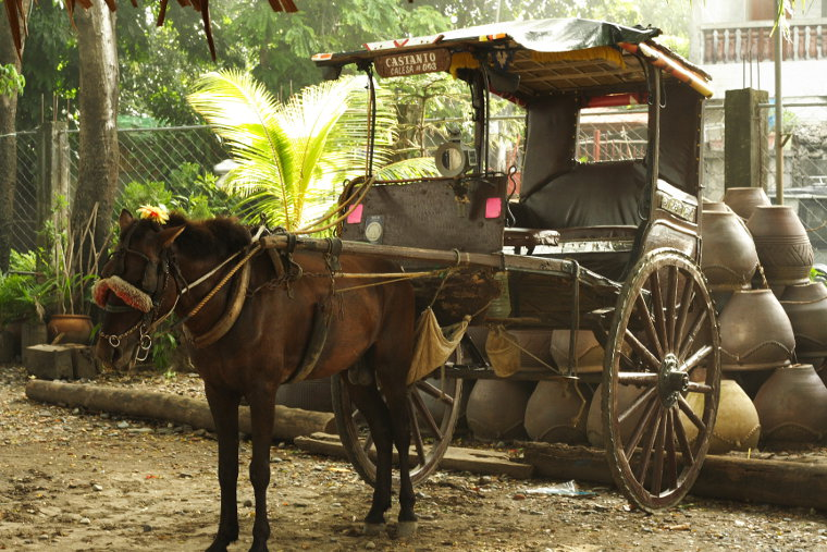 Calesa (Horse & Buggy)