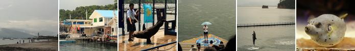 Subic Bay / Ocean Adventure