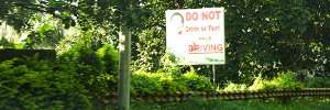 Do Not Drink or Text While Driving