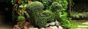 Hidden Garden IV