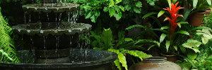 Hidden Garden V