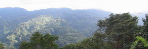 A ride up the mountains going to Baguio