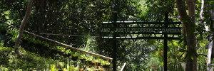 Amb. Justo O. Orros, Jr. Garden